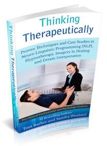 therapeutic3D1 (2015_03_18 14_50_43 UTC)